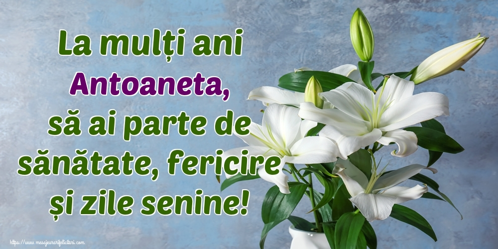 Felicitari de zi de nastere - La mulți ani Antoaneta, să ai parte de sănătate, fericire și zile senine!