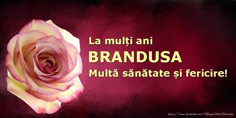 Felicitari de zi de nastere - La mulți ani Brandusa! Multă sănătate și fericire!