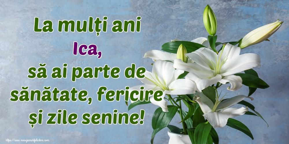 Felicitari de zi de nastere - La mulți ani Ica, să ai parte de sănătate, fericire și zile senine!