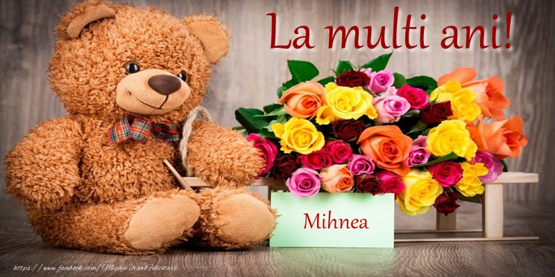 Felicitari de zi de nastere - La multi ani! Mihnea