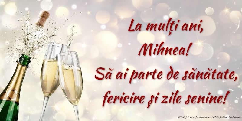 Felicitari de zi de nastere - La mulți ani, Mihnea! Să ai parte de sănătate, fericire și zile senine!