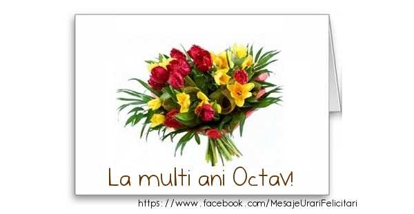Felicitari de zi de nastere - La multi ani Octav!