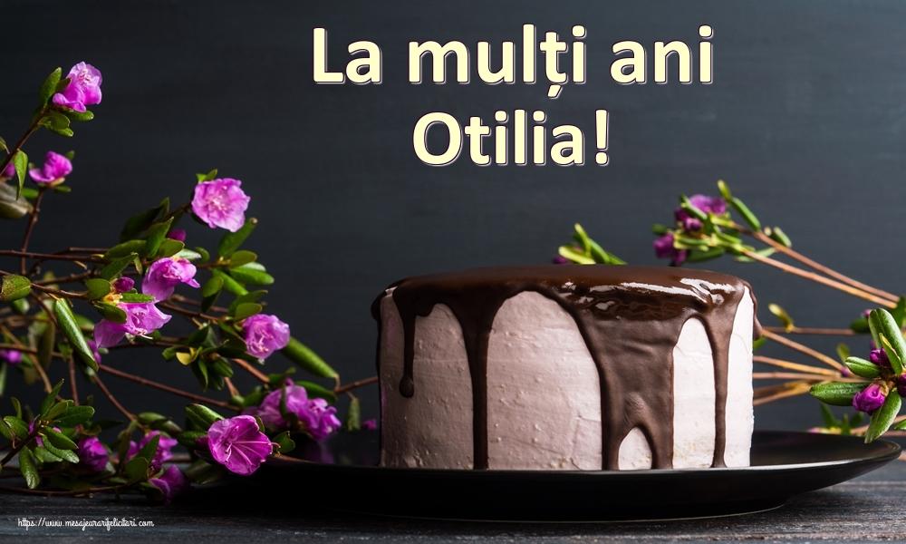 Felicitari de zi de nastere - La mulți ani Otilia!