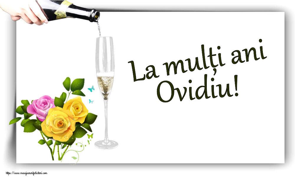 Felicitari de zi de nastere - La mulți ani Ovidiu!