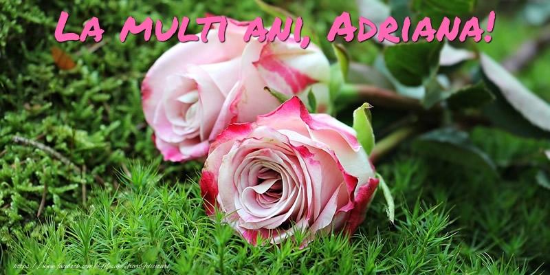 Felicitari de Ziua Numelui - La multi ani, Adriana!