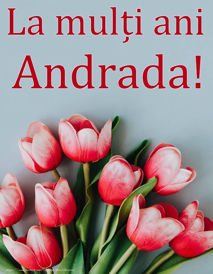 Felicitari de Ziua Numelui - La mulți ani, Andrada!