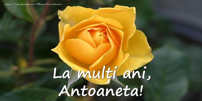 Felicitari de Ziua Numelui - La mulți ani, Antoaneta!