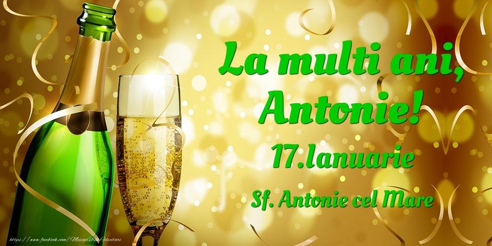Felicitari de Ziua Numelui - La multi ani, Antonie! 17.Ianuarie - Sf. Antonie cel Mare