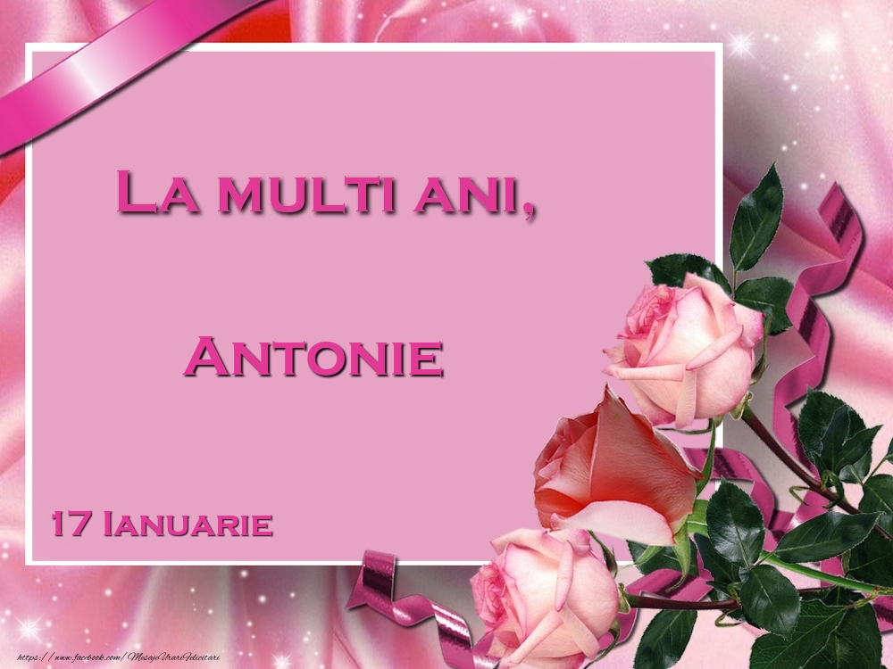 Felicitari de Ziua Numelui - La multi ani, Antonie! 17 Ianuarie