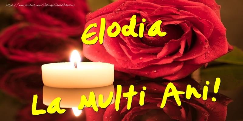 Felicitari de Ziua Numelui - Elodia La Multi Ani!