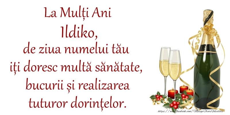 Felicitari de Ziua Numelui - La Mulți Ani Ildiko, de ziua numelui tău iți doresc multă sănătate, bucurii și realizarea tuturor dorințelor.