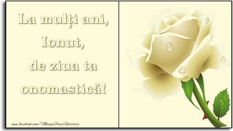 Felicitari de Ziua Numelui - La mulți ani, de ziua ta onomastică! Ionut