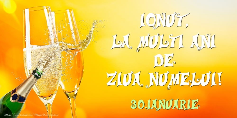 Felicitari de Ziua Numelui - Ionut, la multi ani de ziua numelui! 30.Ianuarie