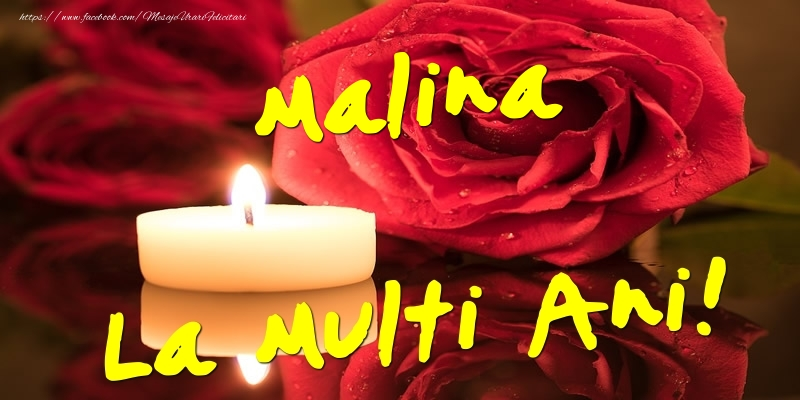 Felicitari de Ziua Numelui - Malina La Multi Ani!