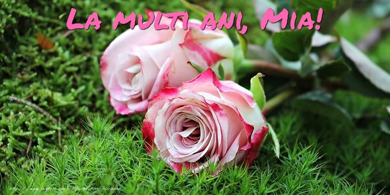 Felicitari de Ziua Numelui - La multi ani, Mia!