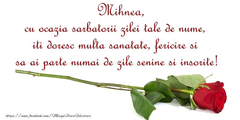 Felicitari de Ziua Numelui - Mihnea, cu ocazia sarbatorii zilei tale de nume, iti doresc multa sanatate, fericire si sa ai parte numai de zile senine si insorite!