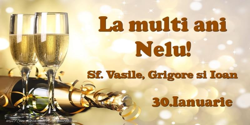 Felicitari de Ziua Numelui - 30.Ianuarie Sf. Vasile, Grigore si Ioan La multi ani, Nelu!