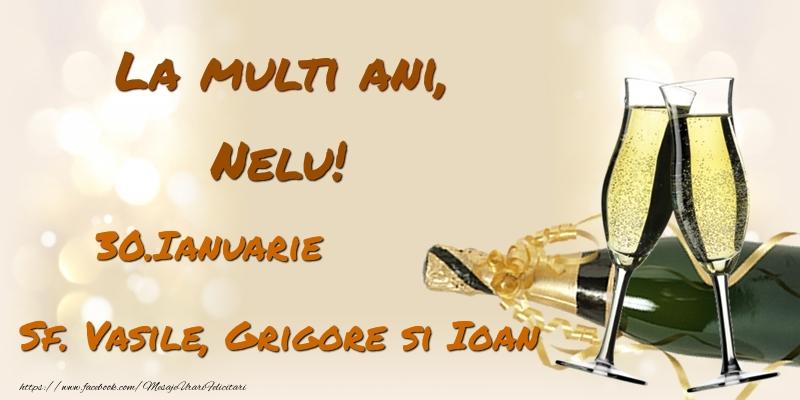 Felicitari de Ziua Numelui - La multi ani, Nelu! 30.Ianuarie - Sf. Vasile, Grigore si Ioan