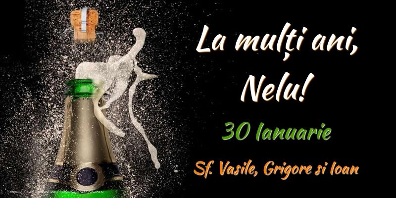 Felicitari de Ziua Numelui - La multi ani, Nelu! 30 Ianuarie Sf. Vasile, Grigore si Ioan