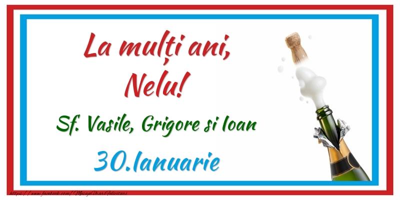 Felicitari de Ziua Numelui - La multi ani, Nelu! 30.Ianuarie Sf. Vasile, Grigore si Ioan