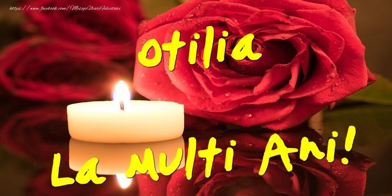 Felicitari de Ziua Numelui - Otilia La Multi Ani!