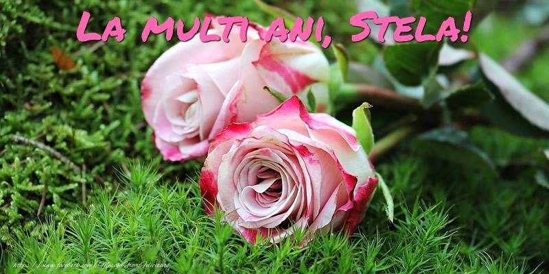 Felicitari de Ziua Numelui - La multi ani, Stela!