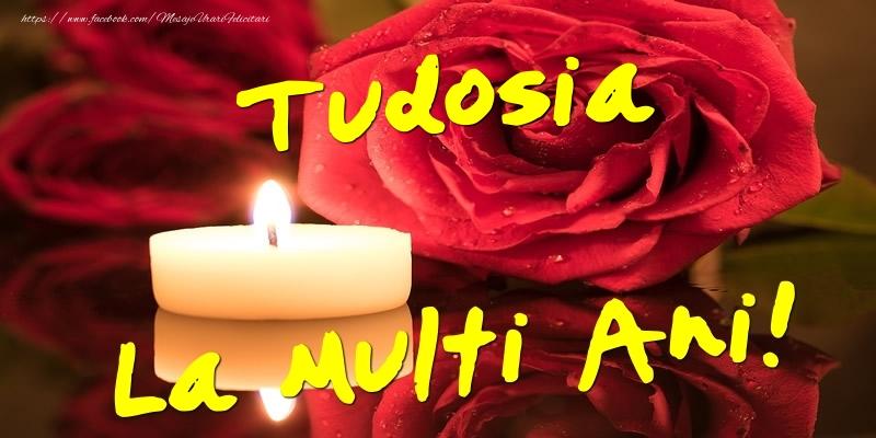 Felicitari de Ziua Numelui - Tudosia La Multi Ani!