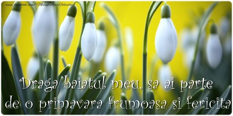 Felicitari de 1 Martie pentru Baiat - Draga baiatul meu, sa ai parte de o primavara frumoasa si fericita