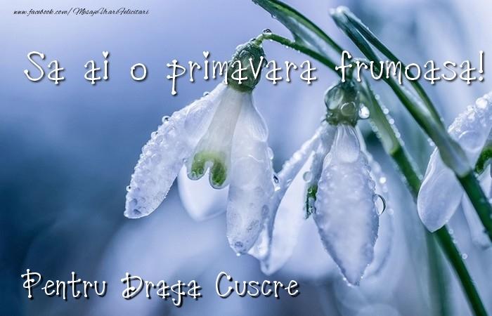 Felicitari de 1 Martie pentru Cuscru - Va doresc o primavara minunata draga cuscre