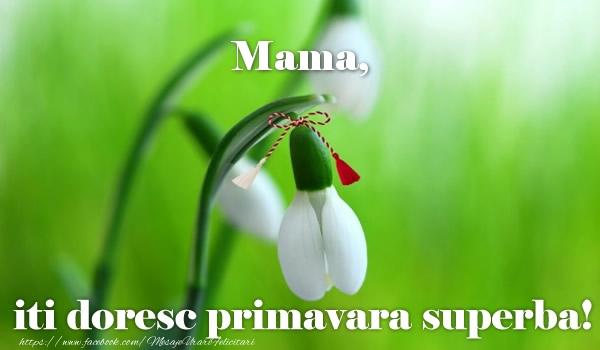 Felicitari de 1 Martie pentru Mama - Mama iti doresc primavara superba!