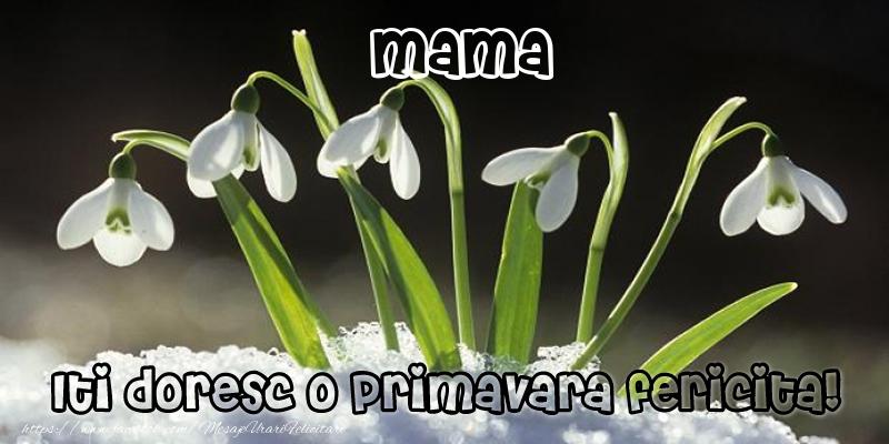 Felicitari de 1 Martie pentru Mama - Mama Iti doresc o primavara fericita!