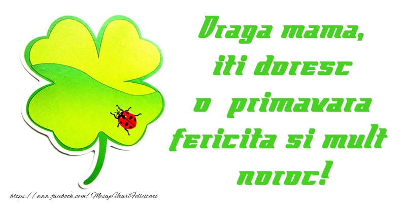 Felicitari de 1 Martie pentru Mama - Draga mama iti doresc o primavara fericita si mult noroc!