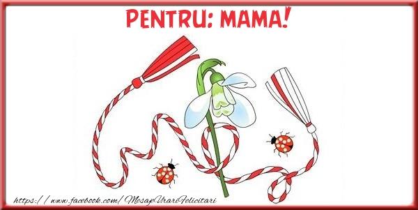 Felicitari de 1 Martie pentru Mama - Pentru mama!
