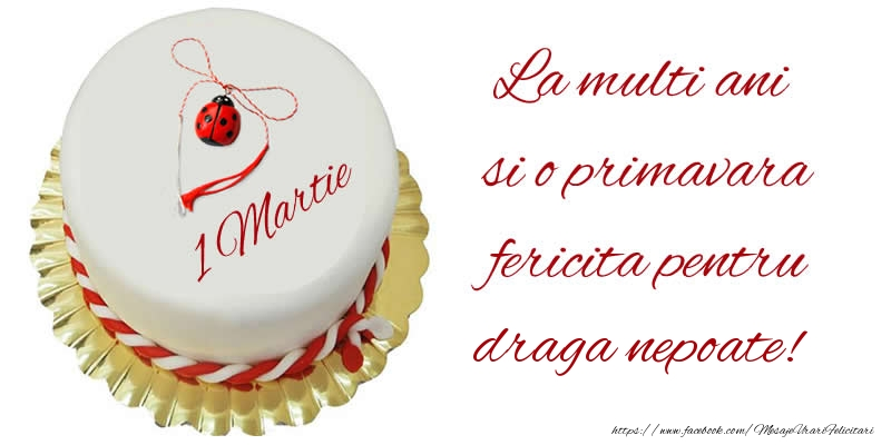 Felicitari de 1 Martie pentru Nepot - La multi ani  si o primavara fericita pentru draga nepoate!
