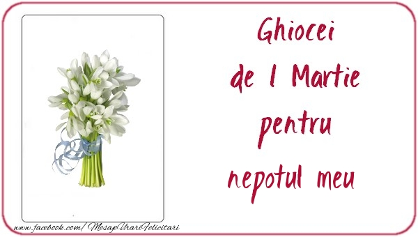 Felicitari de 1 Martie pentru Nepot - Ghiocei de 1 Martie pentru nepotul meu