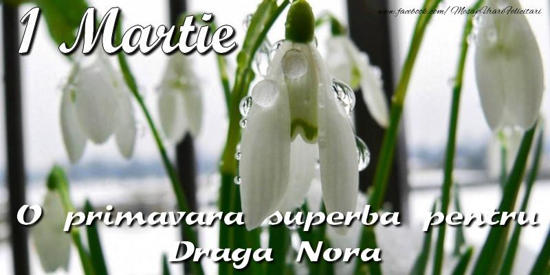 Felicitari de 1 Martie pentru Nora - O primavara superba pentru draga nora