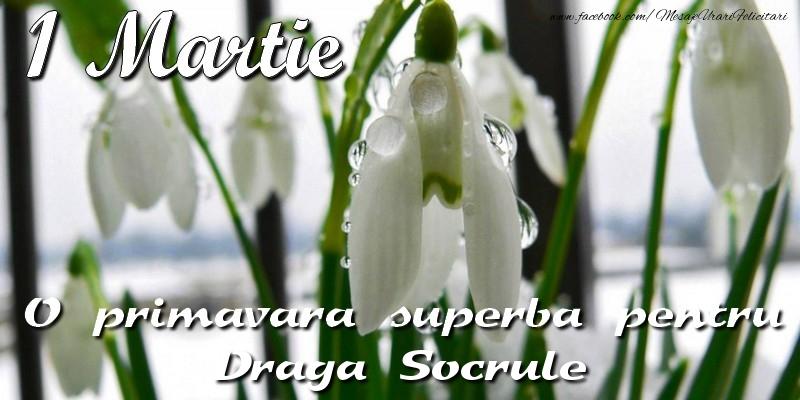 Felicitari de 1 Martie pentru Socru - O primavara superba pentru draga socrule