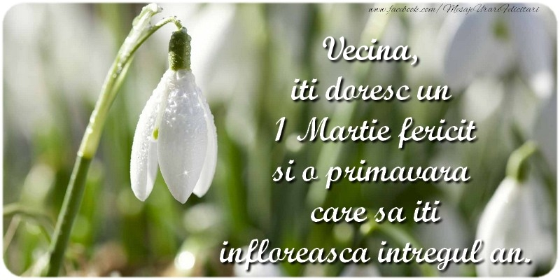 Felicitari de 1 Martie pentru Vecina - Vecina, iti doresc un 1 Martie fericit si o primavara care sa iti infloreasca intregul an.