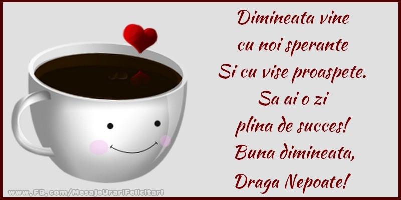 Felicitari de buna dimineata pentru Nepot - Buna dimineata, draga nepoate!