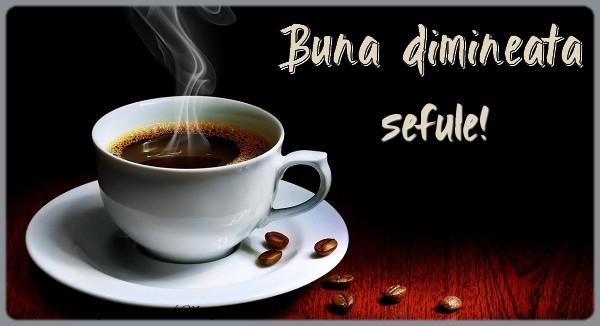 Felicitari de buna dimineata pentru Sef - Buna dimineata sefule!