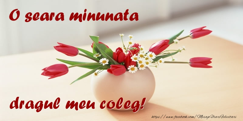 Felicitari de buna seara pentru Coleg - O seara minunata dragul meu coleg!