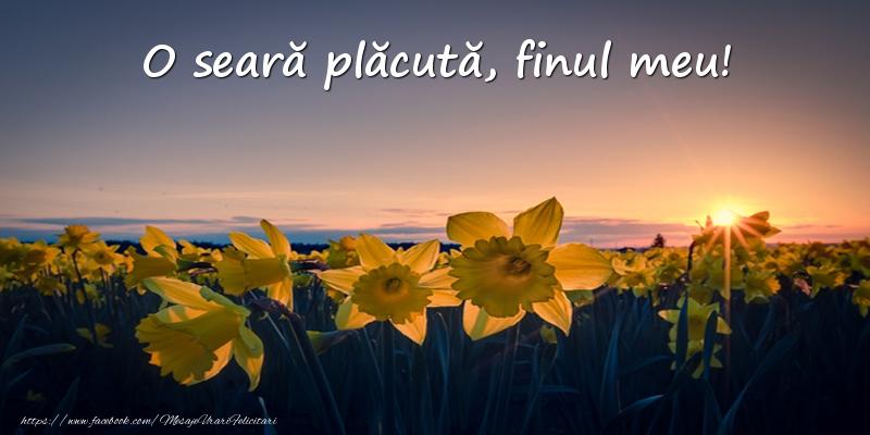 Felicitari de buna seara pentru Fin - Flori: O seară plăcută, finul meu!