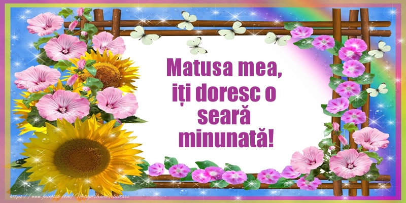 Felicitari de buna seara pentru Matusa - Matusa mea, iți doresc o seară minunată!