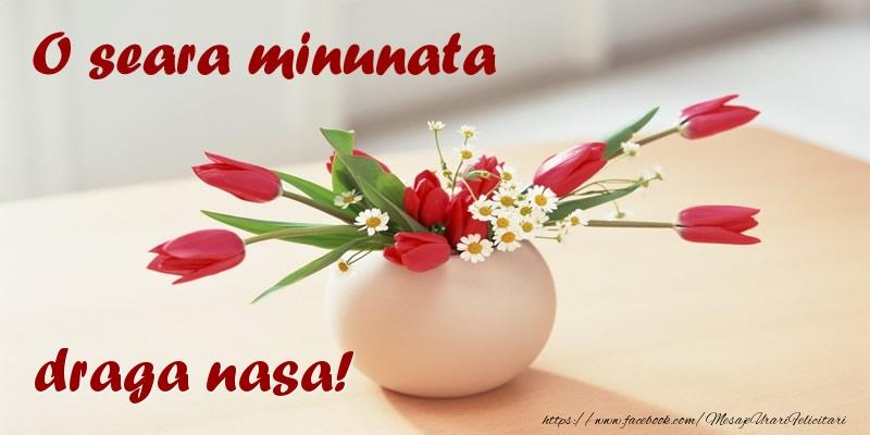 Felicitari de buna seara pentru Nasa - O seara minunata draga nasa!