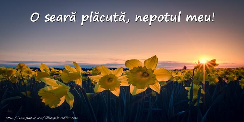 Felicitari de buna seara pentru Nepot - Flori: O seară plăcută, nepotul meu!