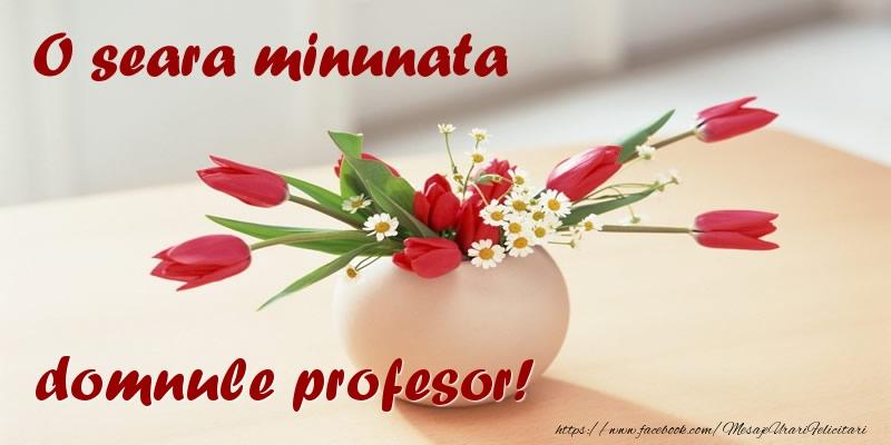 Felicitari de buna seara pentru Profesor - O seara minunata domnule profesor!
