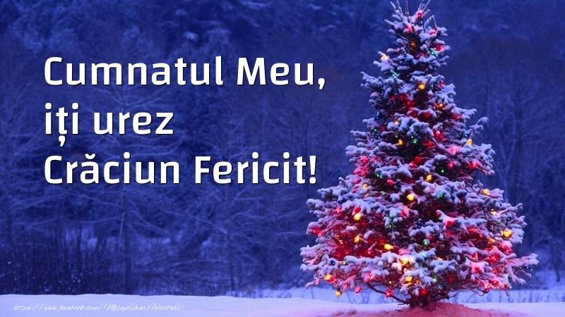 Felicitari de Craciun pentru Cumnat - Cumnatul meu, iți urez Crăciun Fericit!