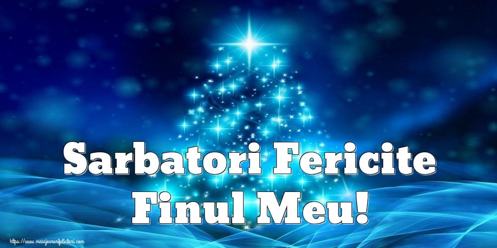 Felicitari de Craciun pentru Fin - Sarbatori Fericite finul meu!