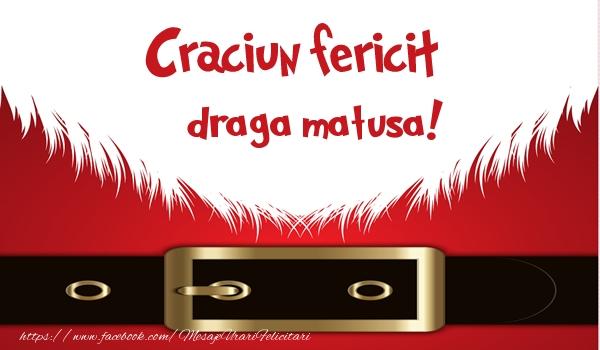 Felicitari de Craciun pentru Matusa - Craciun Fericit draga matusa!
