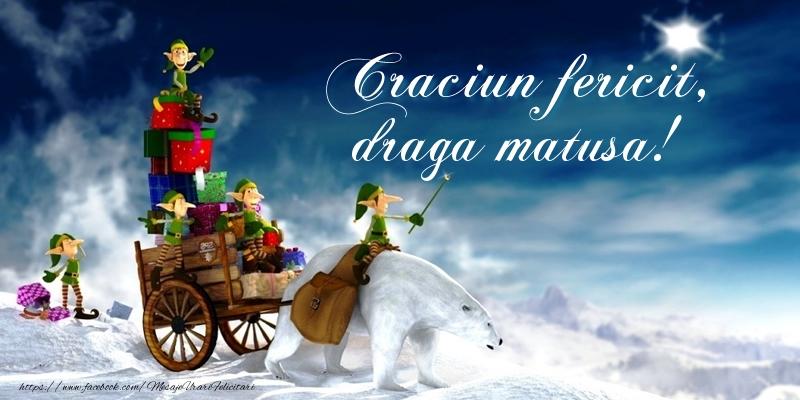 Felicitari de Craciun pentru Matusa - Craciun fericit, draga matusa!